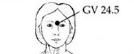 GV24.5